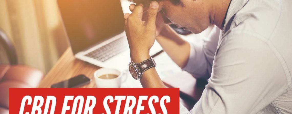 CBD Oil for Stress cbDNA