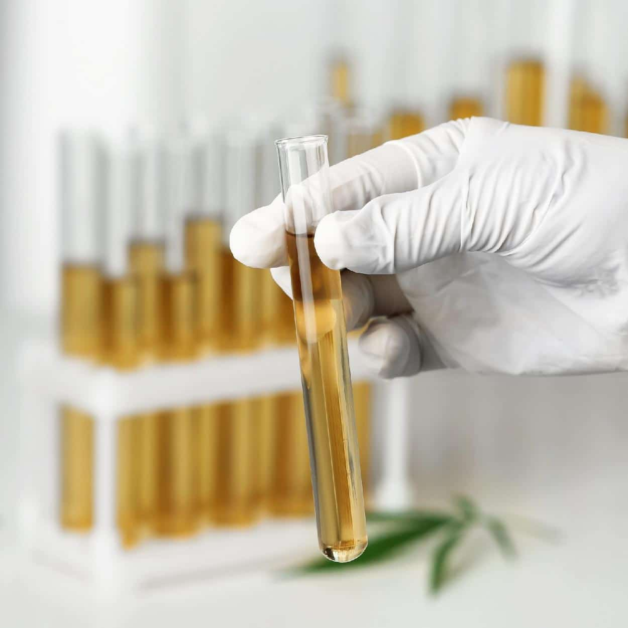 CBD Lab Reports UK